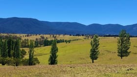 Rural / Farming commercial property for sale at 324 Alcock Collins Road Bemboka NSW 2550