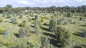 Rural / Farming commercial property for sale at McRoberts Road Locksley VIC 3665