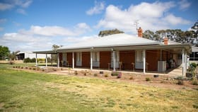 Rural / Farming commercial property for sale at 44 TELEPHONE Road Deniliquin NSW 2710