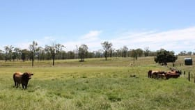 Rural / Farming commercial property for sale at 4687 Wide Bay Highway Cinnabar QLD 4600