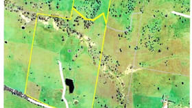 Rural / Farming commercial property for sale at 96 Green Gully Road Uralla NSW 2358