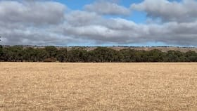 Rural / Farming commercial property for sale at LOT 108 NEINDORF ROAD Robertstown SA 5381