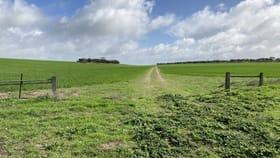 Rural / Farming commercial property for sale at 2414 Murdinga - Murlong Road Lock SA 5633