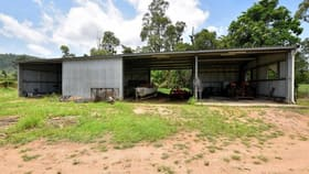 Rural / Farming commercial property for sale at 1/144 Old Cardwell Road Bilyana QLD 4854
