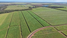 Rural / Farming commercial property for sale at Alloway QLD 4670