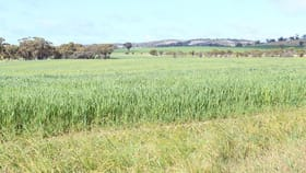 Rural / Farming commercial property for sale at 29576 Spencers Brook - York Rd Spencers Brook WA 6401
