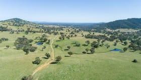 Rural / Farming commercial property for sale at Kurrajong Park 873 Lindon Road Uralla NSW 2358