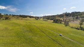Rural / Farming commercial property for sale at NORTH CHARLTON 3008 Lagoon Road Rockley NSW 2795