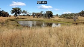 Rural / Farming commercial property for sale at 402 Airlie Brake Lane Inverell NSW 2360