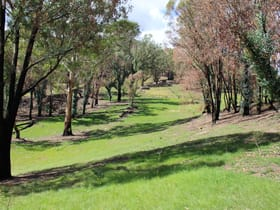 Rural / Farming commercial property sold at 70 Bago Forest Road Tumbarumba NSW 2653