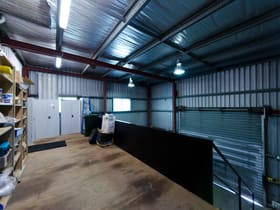 Industrial / Warehouse commercial property for lease at 4/3 Harvton Street Stafford QLD 4053