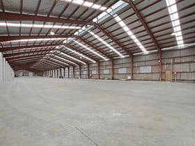 Industrial / Warehouse commercial property for lease at 62 Belmore Road Riverwood NSW 2210