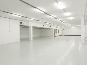 Showrooms / Bulky Goods commercial property for lease at Ground Floor/38 Ricketty Street Mascot NSW 2020