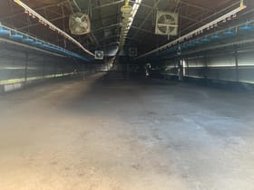 Industrial / Warehouse commercial property for lease at 48 Double Jump Road Victoria Point QLD 4165