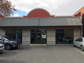 Showrooms / Bulky Goods commercial property for lease at 171 Commercial Road Port Adelaide SA 5015