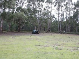 Rural / Farming commercial property for sale at 9 Campbell Street Scamander TAS 7215