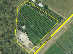 Rural / Farming commercial property for sale at 892 Ayr Dalbeg Road Mount Kelly QLD 4807