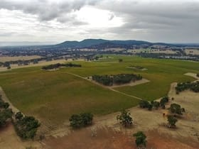 Rural / Farming commercial property for sale at 295 Sugarloaf Road Great Western VIC 3374