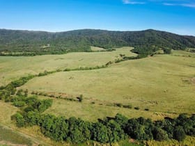 Rural / Farming commercial property for sale at Cane Farms Innisfail QLD 4860