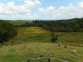 Rural / Farming commercial property for sale at 159 Ducrot Road Daradgee QLD 4860