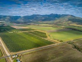 Rural / Farming commercial property for sale at 58 Oakenden School Road Oakenden QLD 4741