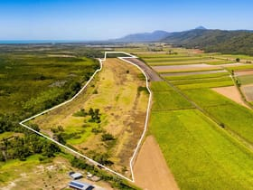 Rural / Farming commercial property for sale at Lot 1 Captain Cook Highway Killaloe QLD 4877