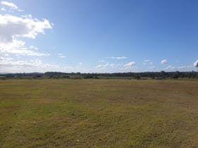 Rural / Farming commercial property for sale at 569 Bells Creek Road Bells Creek QLD 4551