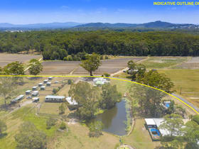 Rural / Farming commercial property for sale at 133 Laxton Road Palmview QLD 4553
