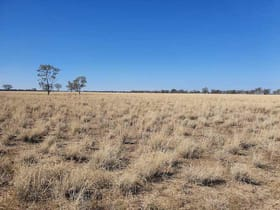 Rural / Farming commercial property for sale at 273 Woodbine Rd Blackall QLD 4472