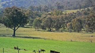 45 Rays Road Nangus NSW 2722