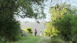 380 Cedar Hills Road Little Forest NSW 2538