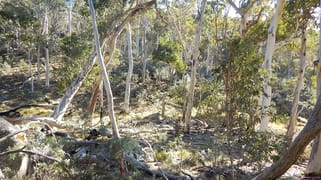 """Lot 49 """"The High Forest"""" Mount Clear Bredbo NSW 2626"""