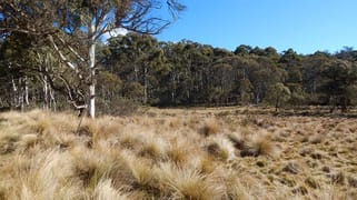 Lot 48 Tea Tree Swamp Bredbo NSW 2626