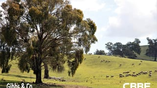 """tillararra"" Perks Road, Boorowa NSW 2586"