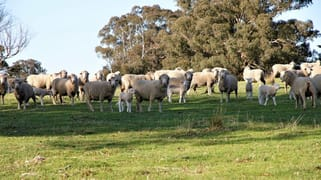 Mount Henry South/1159 Binda Road Crookwell NSW 2583