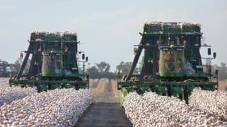 Oodnadatta Farms Moree NSW 2400