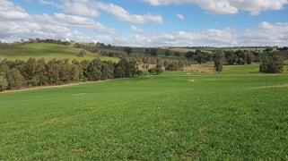 Castlereagh, Skeltons Road Wagga Wagga NSW 2650