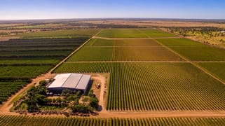 Cordoma Farms Gregory Highway Emerald VIC 3782