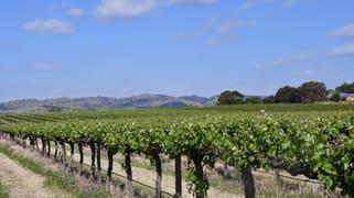 Six Gates Vineyard 1234 Barossa Valley Way Lyndoch SA 5351