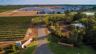 McWilliam's Wines Group 268 Jack McWilliam Road Hanwood NSW 2680