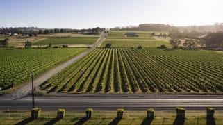 Flatview and White Hut Vineyards Horrocks Highway Stanley Flat SA 5453