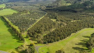 910 King Parrot Creek Road Strath Creek VIC 3658