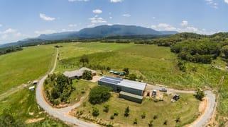 479 Miallo Bamboo Creek Road Bamboo QLD 4873