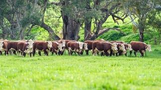 'Culbara'  1235 Annandayle Road Woomargama NSW 2644