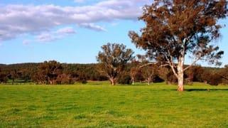 2242 Nangar Road Canowindra NSW 2804