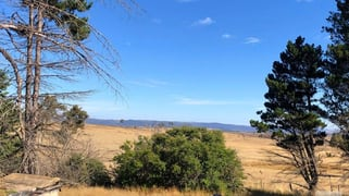 708 Snowy Mountains Highway Dairymans Plains NSW 2630