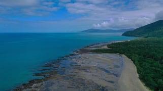 3867 Cape Tribulation Road Cape Tribulation QLD 4873