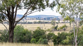 Gayndah Cattle Country/232 Pile Gully Road Pile Gully QLD 4625