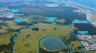110 Rainforrest Drive Meridan Plains QLD 4551