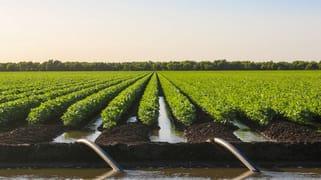 0 Cowal Agriculture Portfolio Emerald QLD 4720